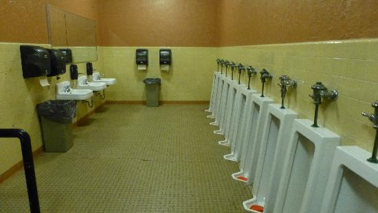 SURF Toilets